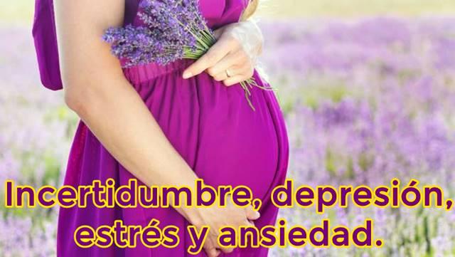 Emociones negativas durante el estado de embarazo