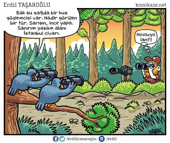 kuş gözlemcisi karikatür