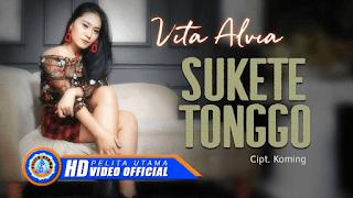 Lirik Lagu Sukete Tonggo - Vita Alvia