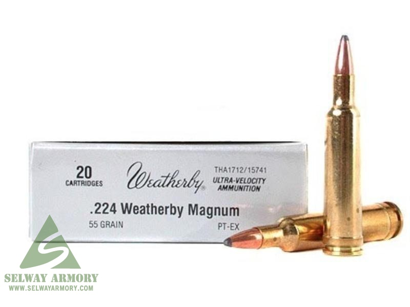 Image result for 224 Weatherby Magnum