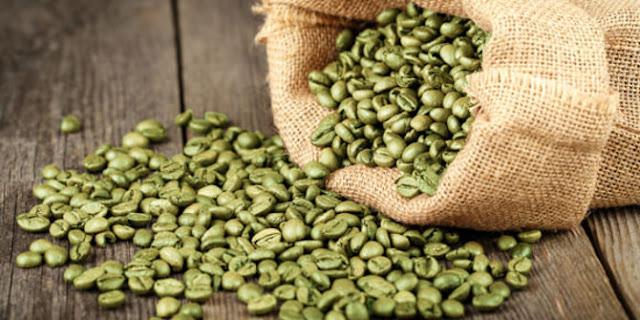 Kopi hijau atau Green coffee berasal dari biji kopi yg tidak digongseng Manfaat Kopi Hijau untuk Kesehatan