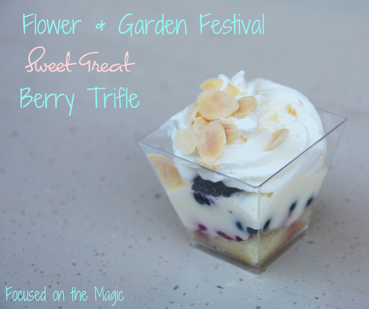 The Berry Trifle Flower and Garden Festival Food at Epcot.