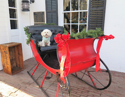 Christmas in the town of Rhinebeck, in upstate New York.  Dog friendly towns in New York