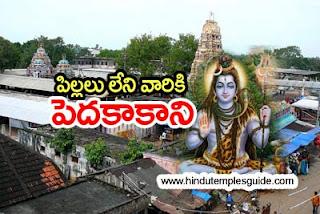 http://www.hindutemplesguide.com/search?q=pedakakani