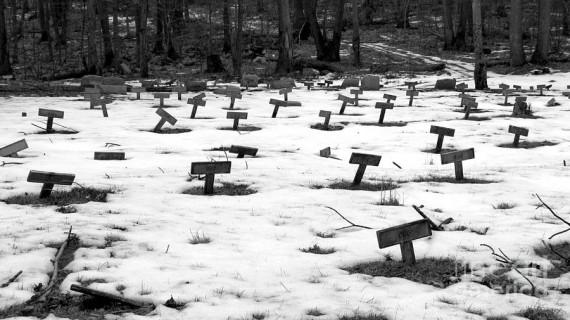 Pemakaman Letchworth Village