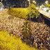 255ª Romaria da Penha deve reunir 500 mil fiéis hoje em JP; confira programação