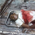 Graphic photo of suspected cultist murdered in Asaba...