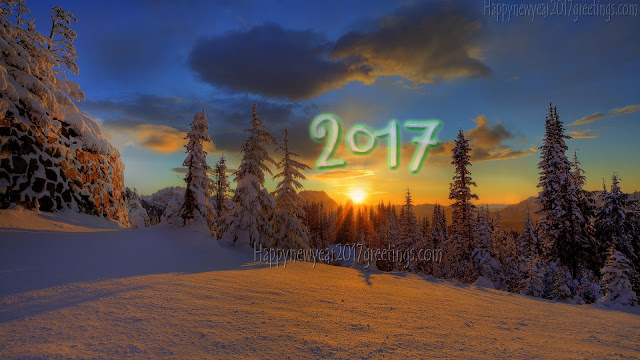 2017 Happy New Year Nature Images Download