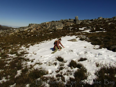 Snow at Perdekop above Franschhoek in August