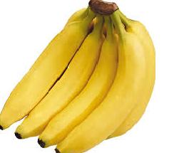 bibit-bibit buah unggul | bibit-bibit pisang unggul | budidaya pisang ambon unggul | pisang ambon unggul | buah pisang unggul