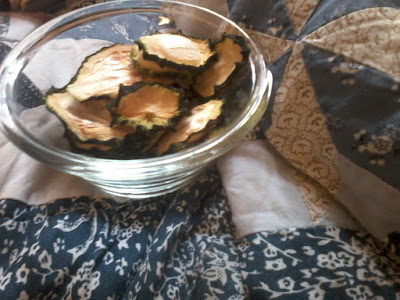 chips zucchine crudiste snack sano
