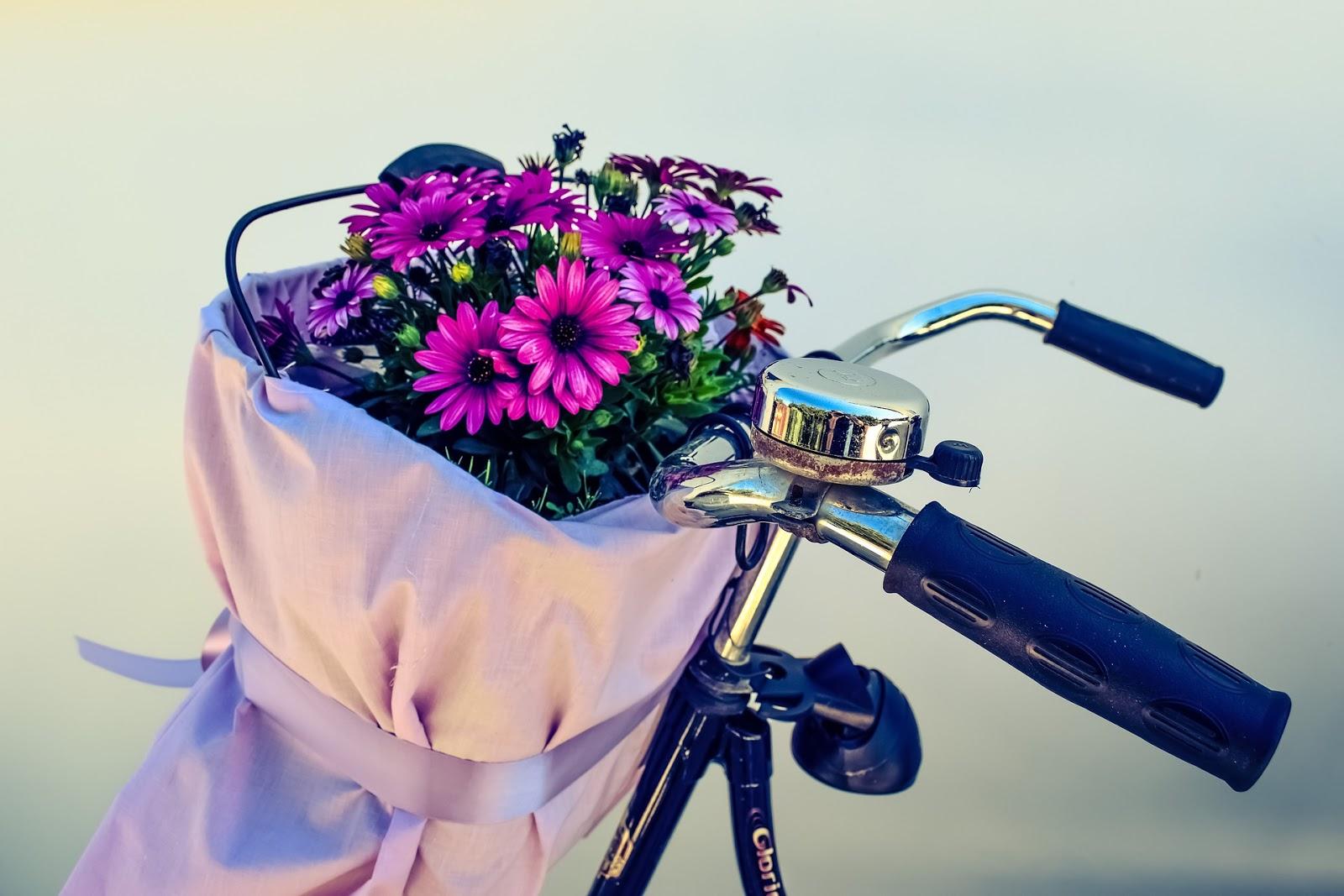 Gdzie kupić (tanio) rower w Amsterdamie?