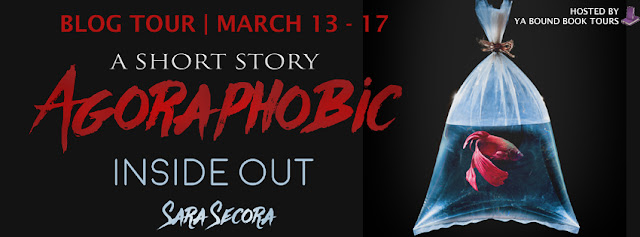 http://yaboundbooktours.blogspot.com/2017/02/blog-tour-schedule-agoraphobic-inside.html