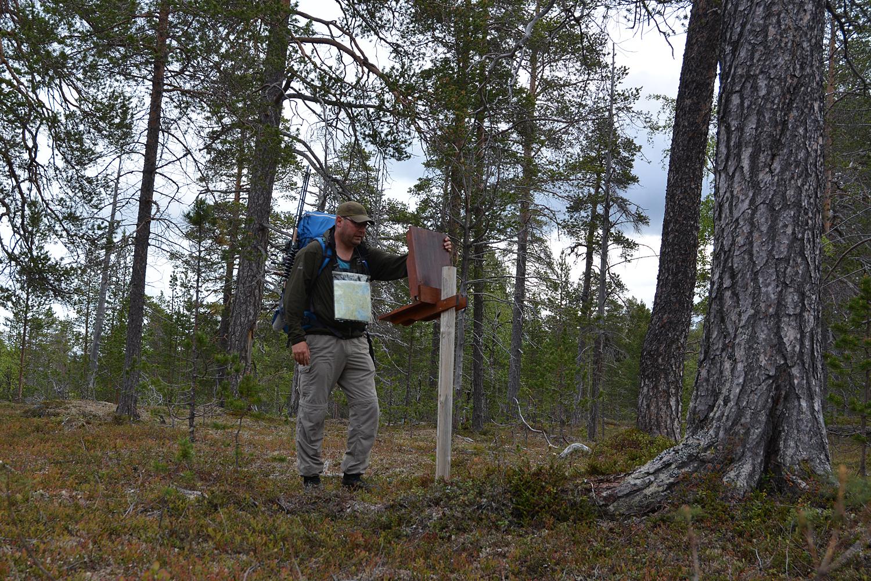 enaresjøen kart Bjarnes turblogg: Øvre Pasvik nasjonalpark enaresjøen kart