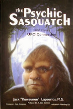 Researcher claims 'Sasquatch' are advanced beings with UFO connections