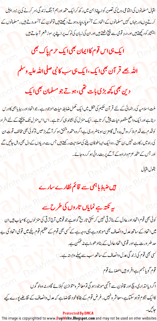 Qaumi Ittehad Essay In Urdu 2