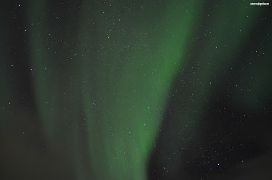 Chasing the Aurora with Lights Over Lapland