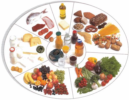 بحث عن الوجبات الغذائية في اليوم