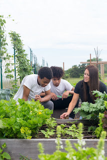 An adult teaching two kids about a garden.