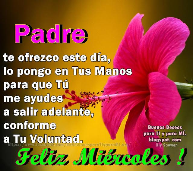 PADRE Te ofrezco este día, lo pongo en Tus Manos, para que Tú me ayudes a salir adelante conforme a Tu Voluntad.  FELIZ MIÉRCOLES !