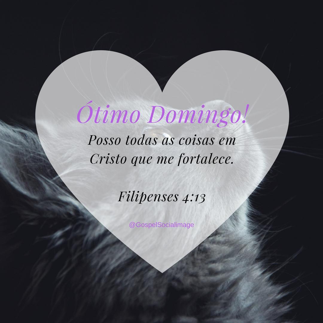 Imagem Bíblica para Whatsapp - Filipenses 4_13