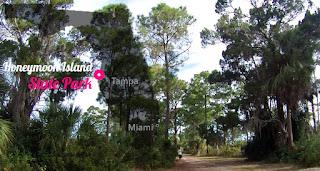 Honeymoon Island State Park, Florida USA