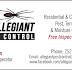 Allegiant Pest Control