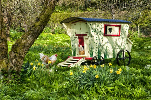Gypsy Hen House