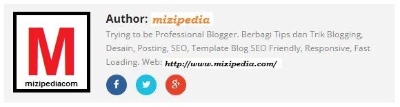 Cara Membuat Author Profil Blog  Responsive + Media Sosial di Bawah Posting