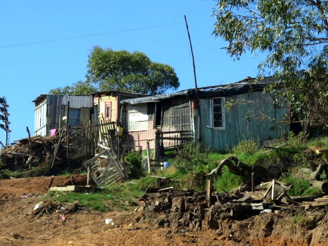 Township shack in South Africa