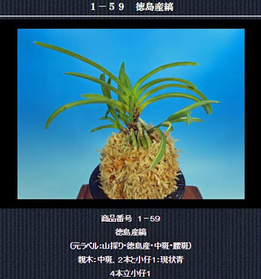 http://www.fuuran.jp/1-59.html