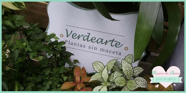 Plantas naturales sin maceta de VERDEARTE-By Ana Oval