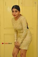 Actress Pooja Roshan Stills in Golden Short Dress at Box Movie Audio Launch  0014.JPG