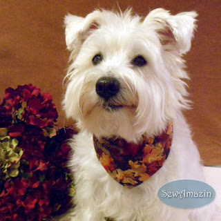 Autumn Dog Bandana, Maple Leaves