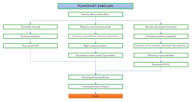PULMONARY EMBOLISM PATHWAY