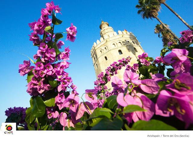 O que fazer em Sevilha em 1 dia?