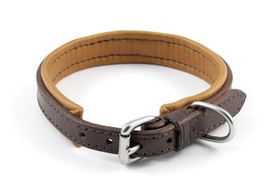 Collare imbottito per Jack Russell realizzato in cuoio marrone con fibbia in acciaio inox.