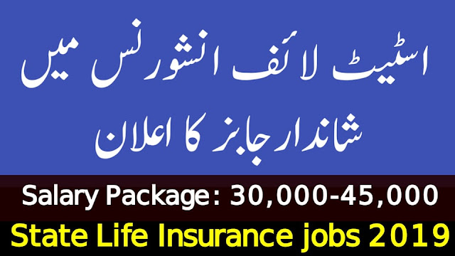 State Life Insurance Jobs 2019 | 600+ Vacancies |