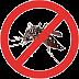 Piauí segue registrando queda nos casos de dengue