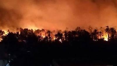 حريق قرية الراشدة