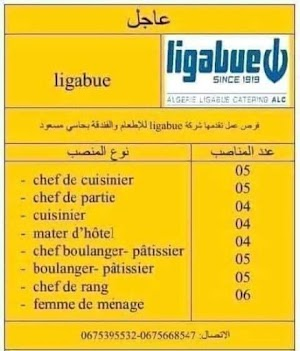 وظائف جديدة شاغرة بحاسي مسعود تخصص الطبخ