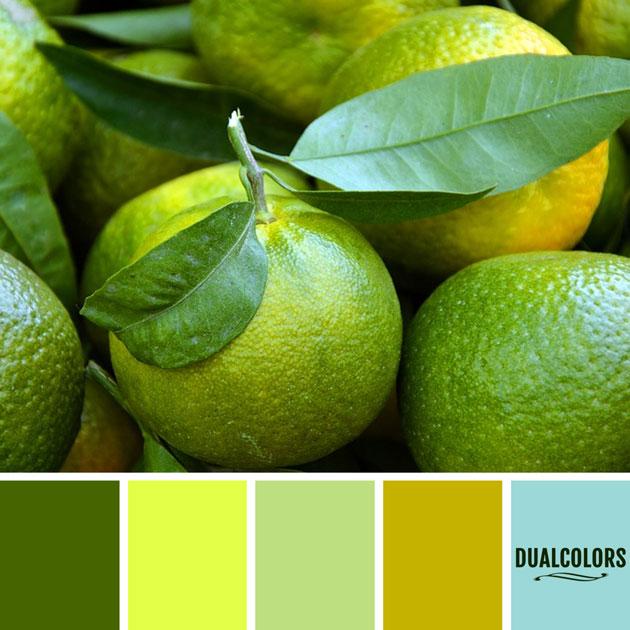 color_paleta_103