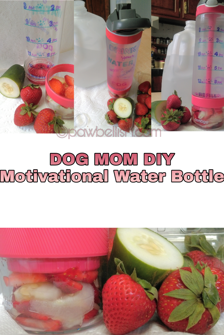 Dog Mom Diy project for a motivational water bottle. Step by step instructions