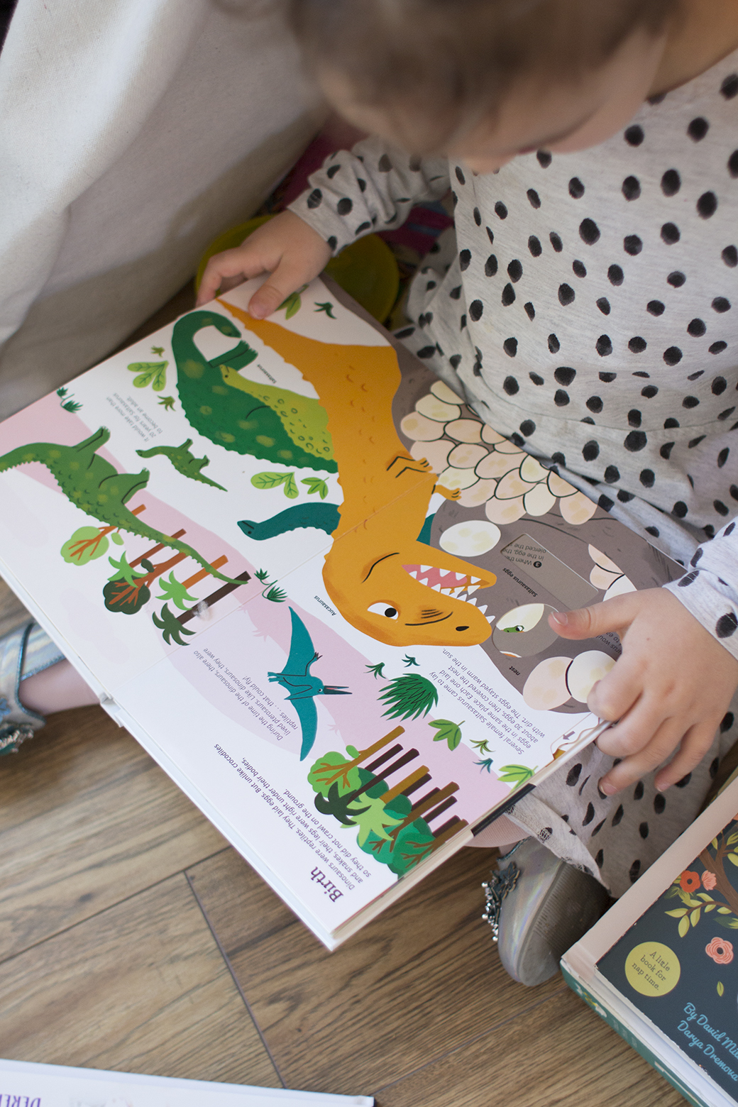 Dinosaurs Board Book