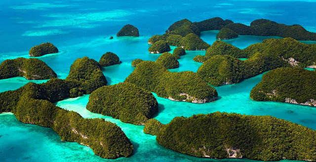 Raja Ampat, A Paradise in an Unexplored Area for Both Divers and Nature Lovers