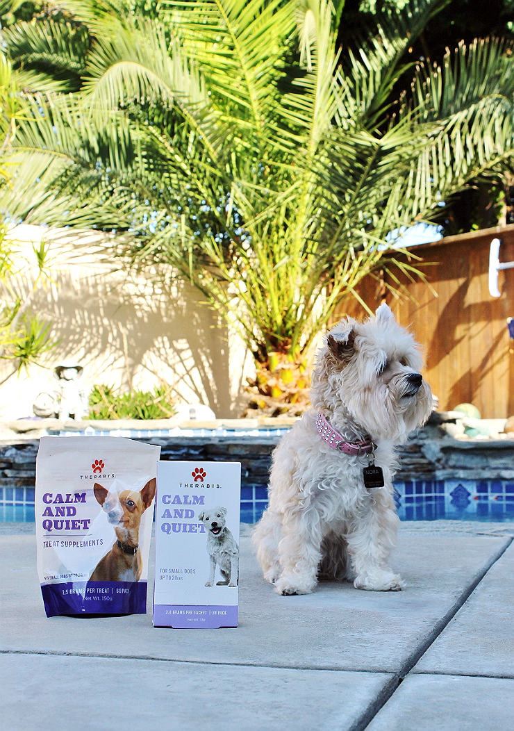 #GrabTheLeash with this simple and natural solution to ease anxiety in your dog. #AD
