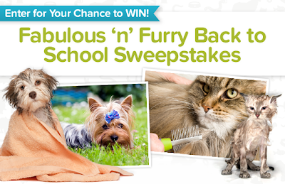 Back To School For Pets Deluxe Grooming Package Giveaway