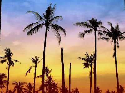 Wisata Pekalongan - Pantai Depok