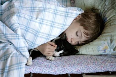 Tertular Meningitis Akibat Tidur Dengan Hewan