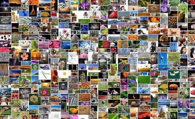 collagen, fotos, imágenes, editores online, editores, tienda, windows
